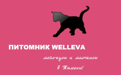 "Питомник""Welleva"""