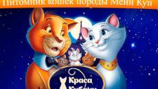 """Питомник """"Краса Кубани"""""""